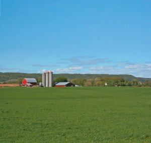 Sendvič paneli za poljoprivredne objekte